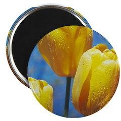 Flower #19, Magnet