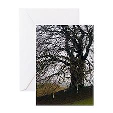 Avebury beech Greeting Card