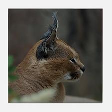 Lynx Tile Coaster