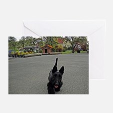 Scottie Dog Greeting Cards (Pk of 10)