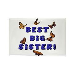 Best Big Sister! Rectangle Magnet (10 pack)