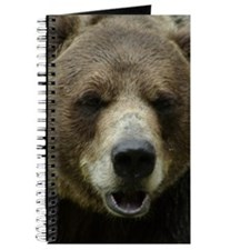 Grizzly Bear Journal