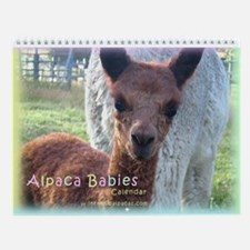 Alpaca Babies Wall Calendar