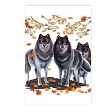Wolves In Fall Postcards (Package of 8)