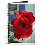 Flower #18, Journal