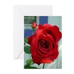 Flower #18, Greeting Cards (Pk of 10)