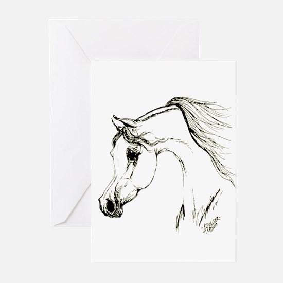 Cool Foal Greeting Cards (Pk of 20)