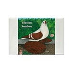 Silesian Swallow Rectangle Magnet (100 pack)