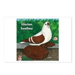 Silesian Swallow Postcards (Package of 8)