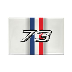 Cars 1973 Rectangle Magnet (100 pack)