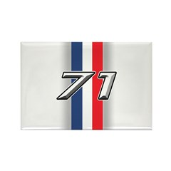 Cars 1971 Rectangle Magnet (100 pack)