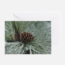 Frosted Pine Cone Greeting Card