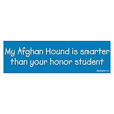 Afghan Hound / Honor Student