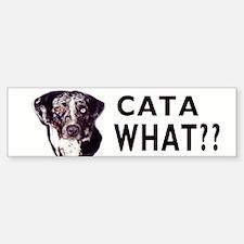 cata what? Bumper Car Car Sticker
