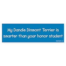 Dandie Dinmont Terrier / Honor Student