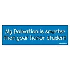 Dalmatian / Honor Student