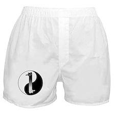 Toon Tao of Longcat Boxer Shorts