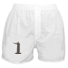 Interdimensional Longcat Boxer Shorts