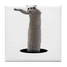 Interdimensional Longcat Tile Coaster