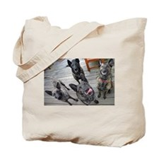 Four DS Tote Bag