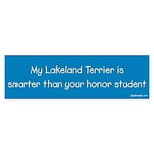 Lakeland Terrier / Honor Student