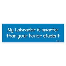 Labrador/Honor Student Bumper Car Sticker