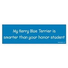 Kerry Blue Terrier / Honor Student