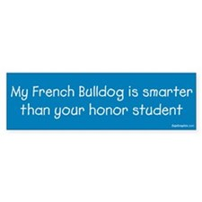 French Bulldog / Honor Student