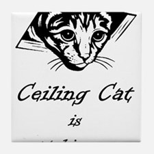 Ceiling Cat is Watching You Tile Coaster