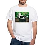 Saxon Swallow Pigeon White T-Shirt