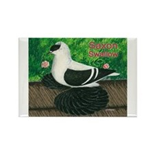 Saxon Swallow Pigeon Rectangle Magnet