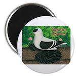 Saxon Swallow Pigeon Magnet