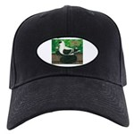Saxon Swallow Pigeon Black Cap