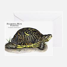 Florida Box Turtle Greeting Card