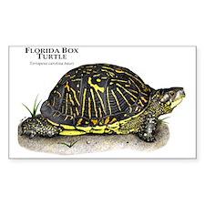 Florida Box Turtle Rectangle Decal