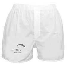 """Paragliding Evolution"" Boxer Shorts"
