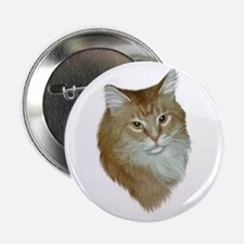 Orange Tabby Button