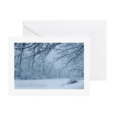 Winter Pond Greeting Cards (Pk of 10)