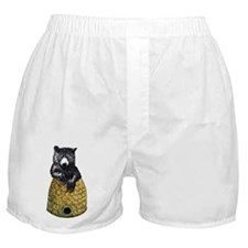 Bear with Hive Boxer Shorts