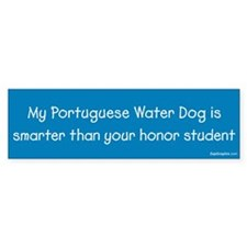 Portuguese Water Dog / Honor Student