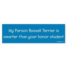 Parson Russell Terrier / Honor Student