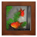 Goldfish Framed Tile
