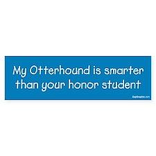 Otterhound / Honor Student