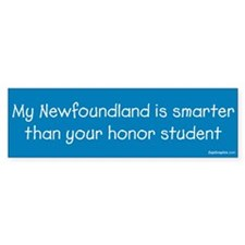 Newfoundland / Honor Student