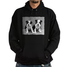 Boston Terrier Puppies Hoodie
