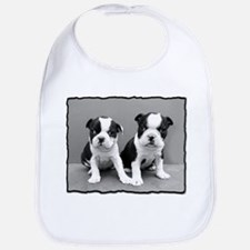 Boston Terrier Puppies Bib