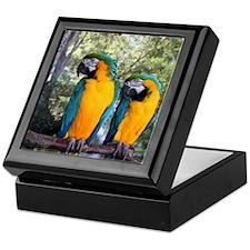 Blue & Gold Macaw Pair Keepsake Box