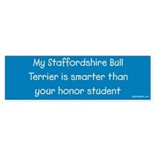 Staffordshire Bull Terrier / Honor Student