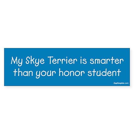 Skye Terrier / Honor Student