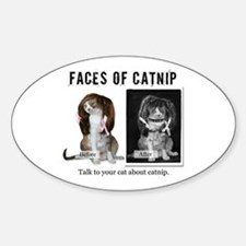 Faces of Catnip Oval Decal
